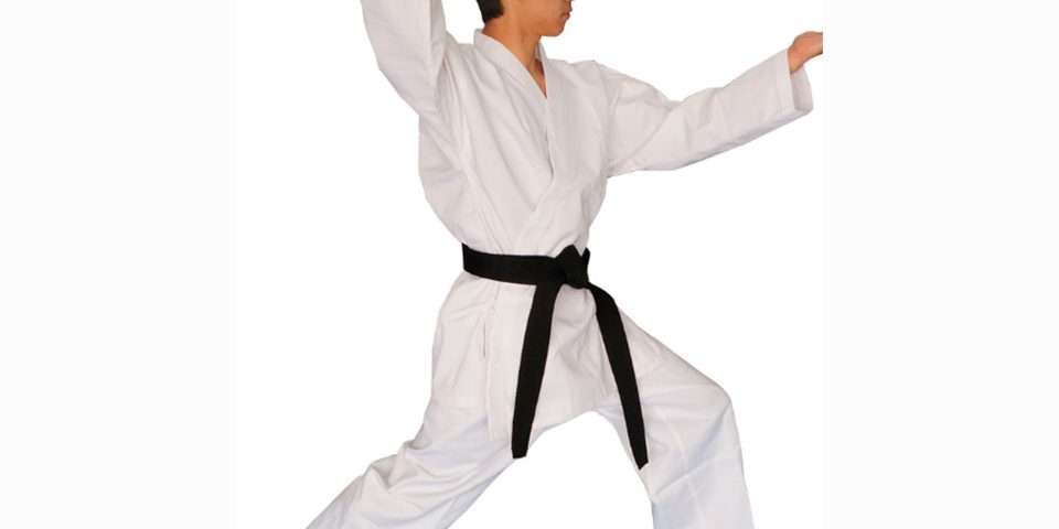 karate-img1